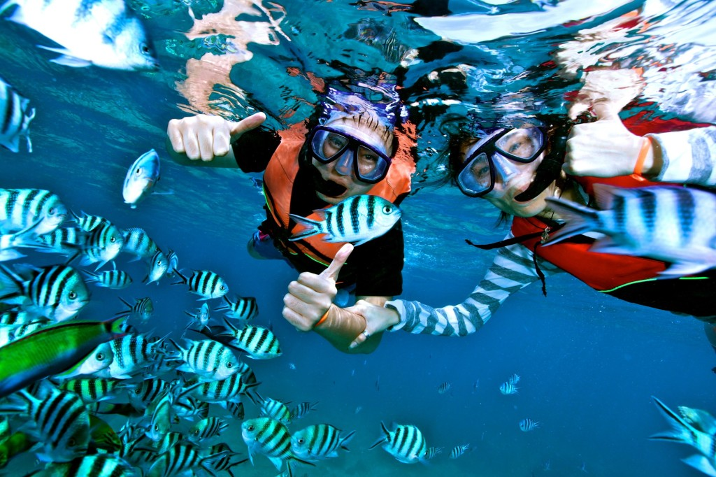 snorkeling questions and answers