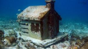 urban reef house MUSA