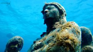 evolution2 isla mujere