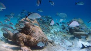 bankers underwater museum