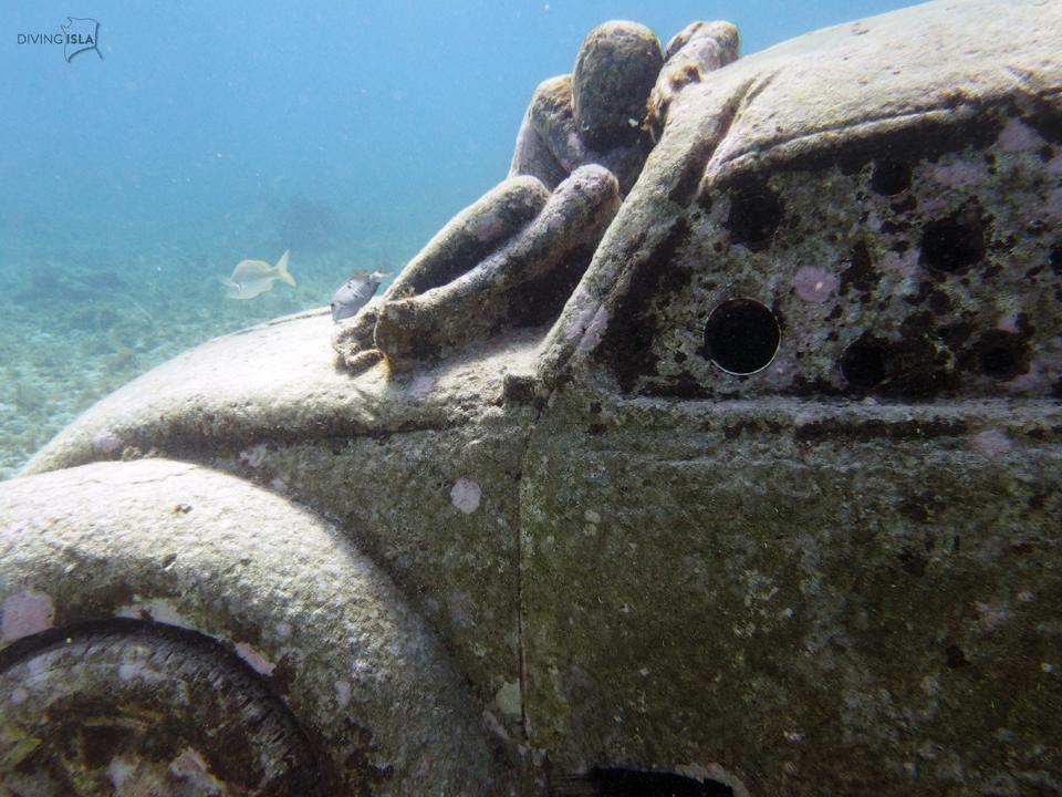 diving anthropocene isla mujeres