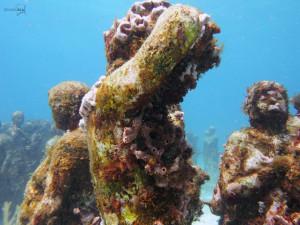 diving silent evolution underwater museum